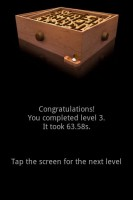 Labyrinth Lite Successful Level Completion