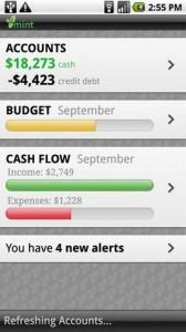Mint Personal Finance Accounts
