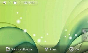 Flikie Wallpapers Details and Options in Landscape Mode