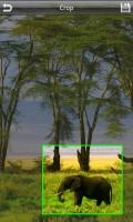 QuickPic Crop Image