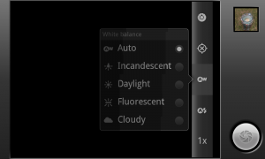 Camera Effects - In-pic options 3