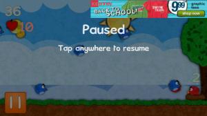 Pocket Pidgeons Paused