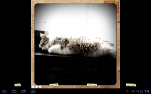retro camera images tab