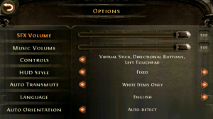 Dungeon Hunter 2 Options