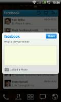 GO FBWidget - Post status update