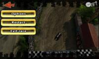 Reckless Racing - Pause menu
