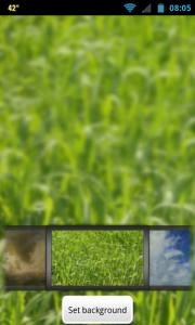 1Weather - Change background
