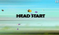 Bumbee Head Start