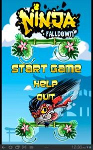 Ninja Falldown Main