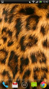 Purrapy - Tame Leopard