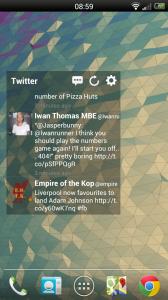 Wizz Widget - Twitter