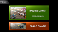 INDESTRUCTIBLE - 'Ranked' match or single player against AIs
