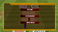 IPL Cricket Fever - Pause menu