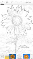 Paintrala Pen Sketch Filter
