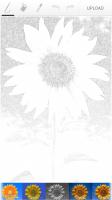 Paintrala Pencil Sketch Filter