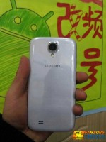 Samsung Galaxy S4 Leak (Back View)