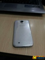 Samsung Galaxy S4 Leak (Back View 2)