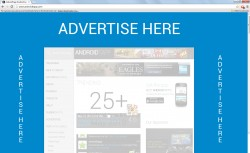 Advertising Placements Website Takeover