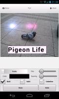 PhotoSkin - Add text