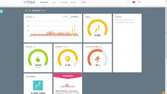 Fitbit Online Dasboard