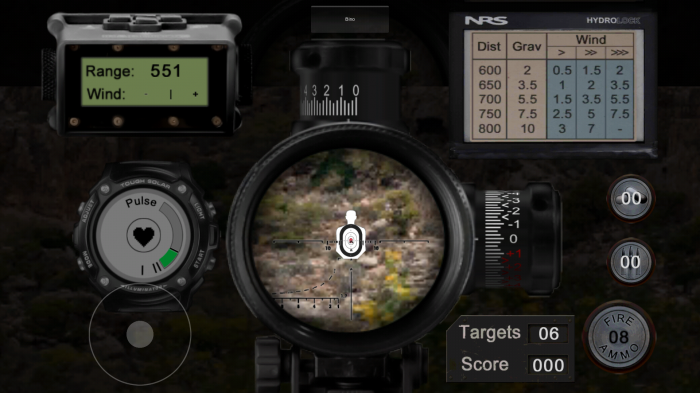 Pro Shooter: Sniper. A real experience sniper target practice game