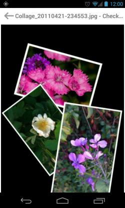 FindIt - Image viewer