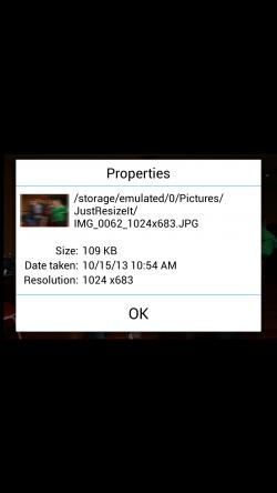 JustResizeIt - Resized Image Properties