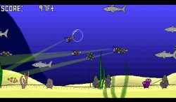 Clownfish Go  (3)