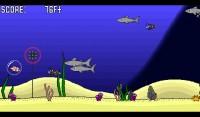 Clownfish Go  (4)