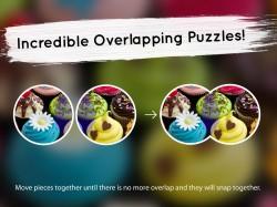 Venn Free Trial Circle Jigsaw - Overlap