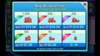 Bingo Bash - In-App Purchases
