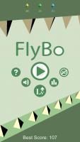FlyBo (1)
