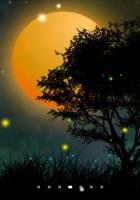 Nature Fireflies LiveWallpaper (1)