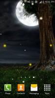 Nature Fireflies LiveWallpaper (3)