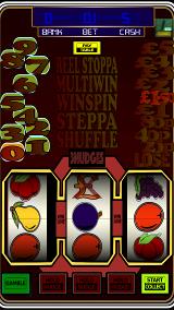 Pub Slots 2 Fruit Machine (1)