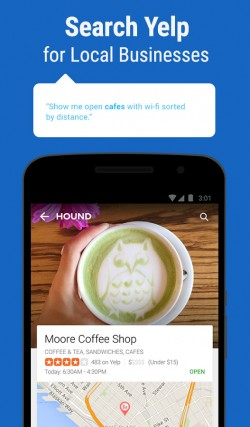 HOUND Voice Search and Assistant 6