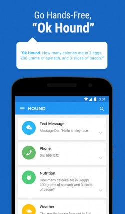 HOUND Voice Search and Assistant 7