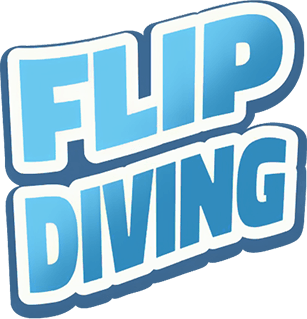 Flip Diving on pc