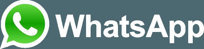 Baixe Whatsapp No Pc Com O Emulador Android Bluestacks