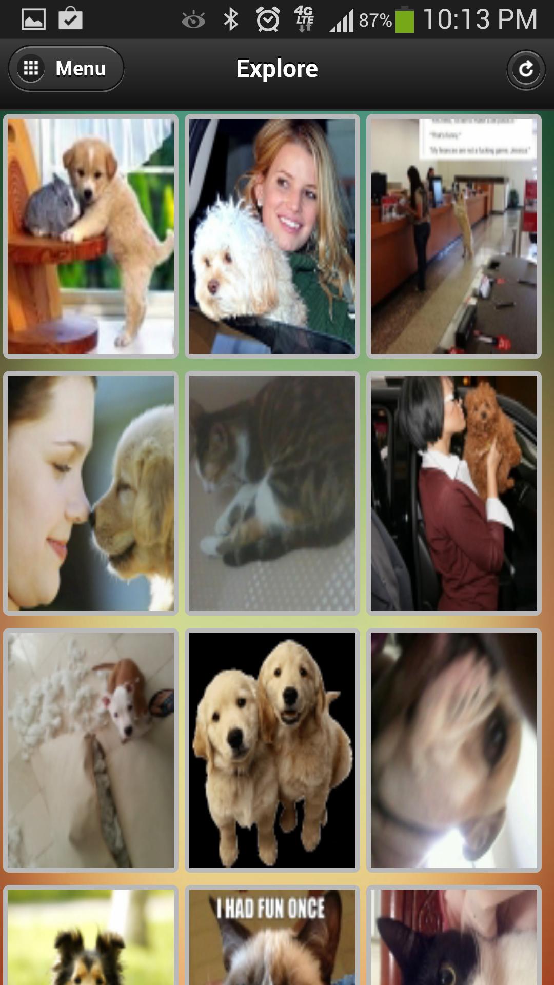 POMP Pics Of My Pet - Explore