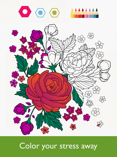 Play Colorfy on PC 8