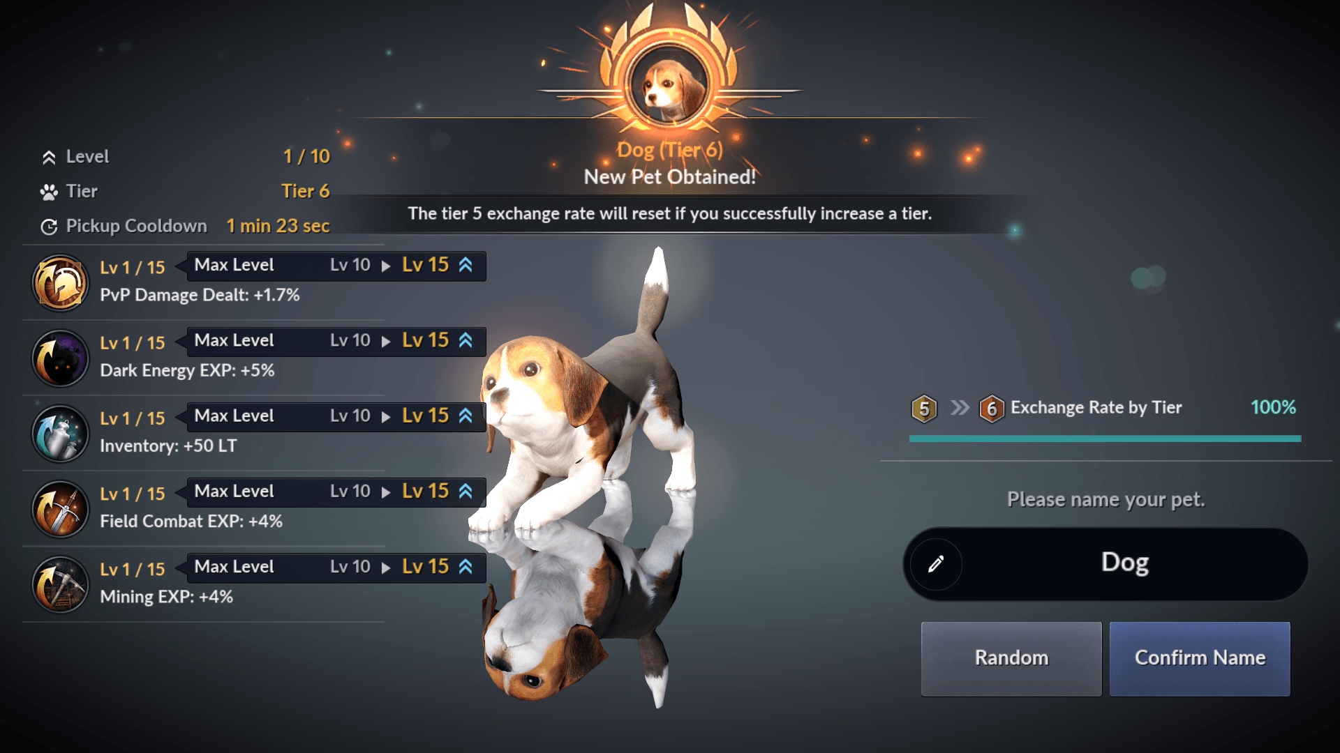 Tier 6 Pets are Now Available in Black Desert Mobile