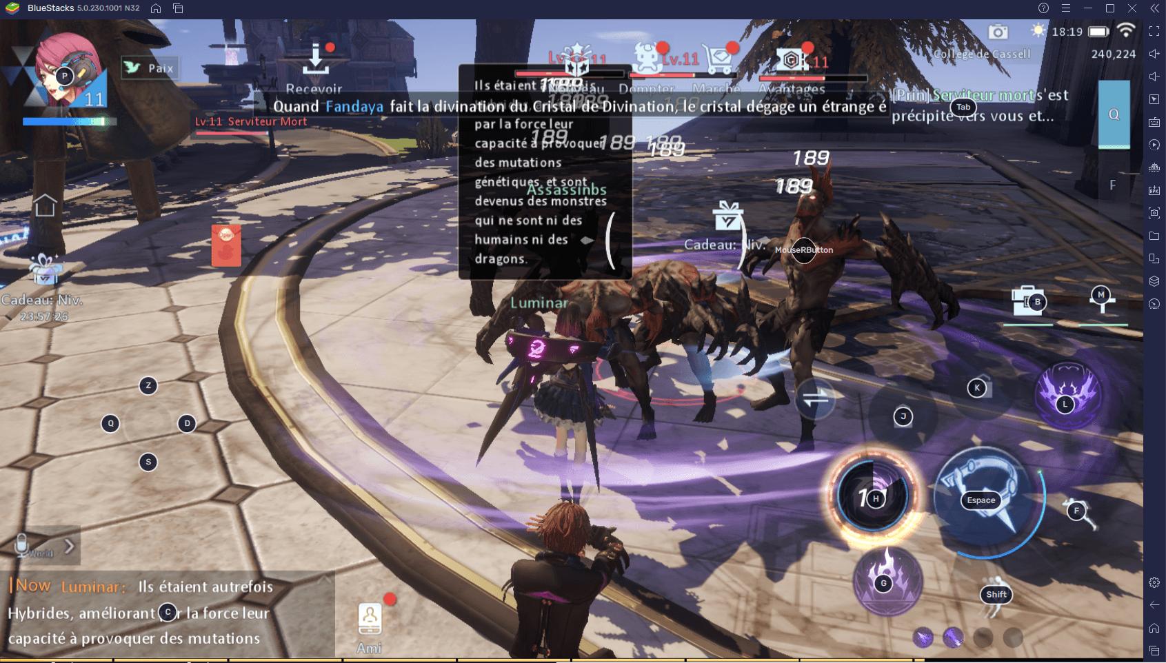 Dragon Raja – Le Guide des Différentes Classes