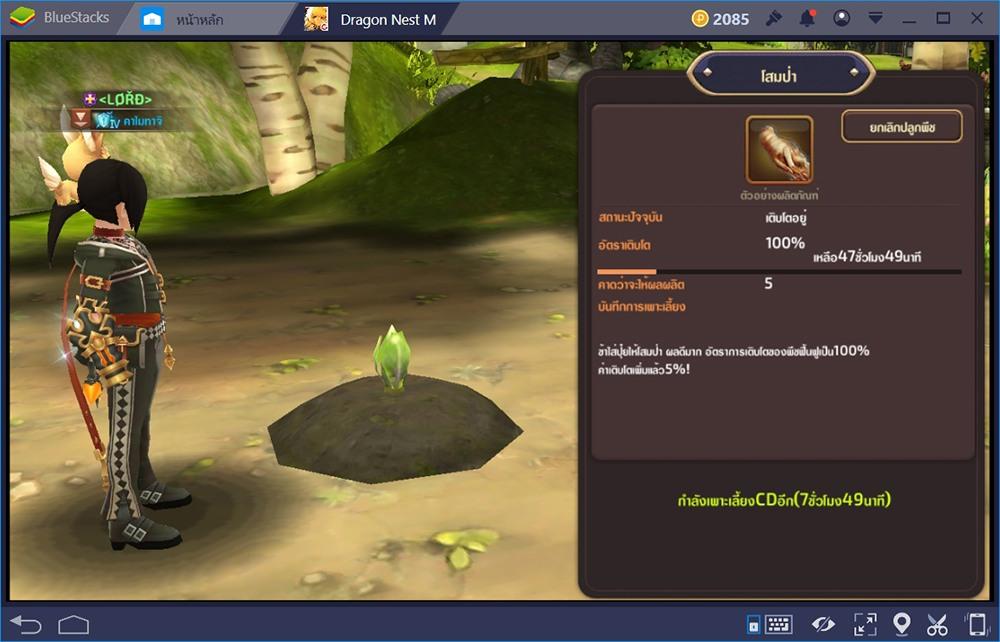 Dragon Nest M ไอเทมเทพ, ไอเทมเซ็ต สร้างได้สร้างง่ายๆด้วยการคราฟ