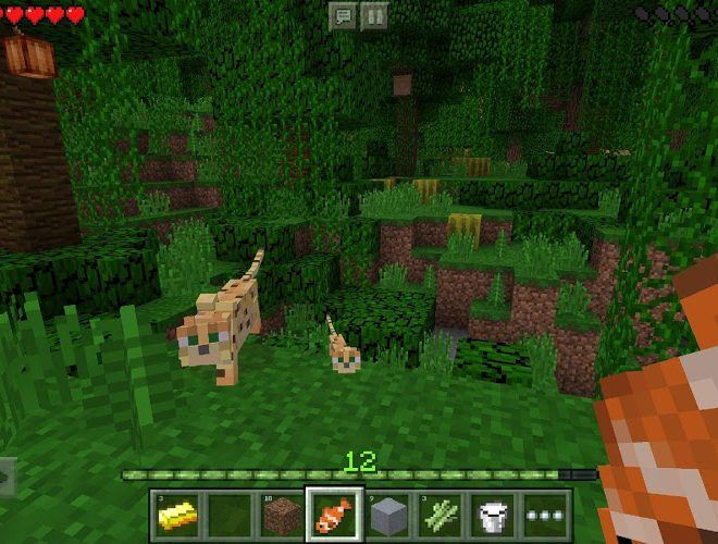 Play Minecraft on PC 11