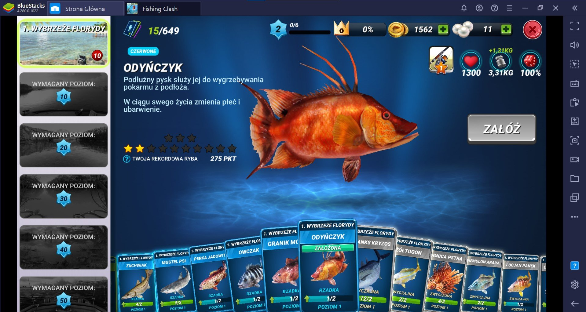 Fishing Clash: Przewodnik po wędkach