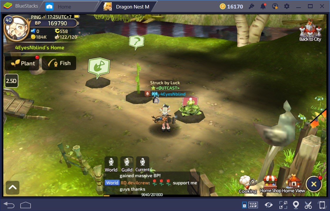 Dragon Nest M Resources Guide