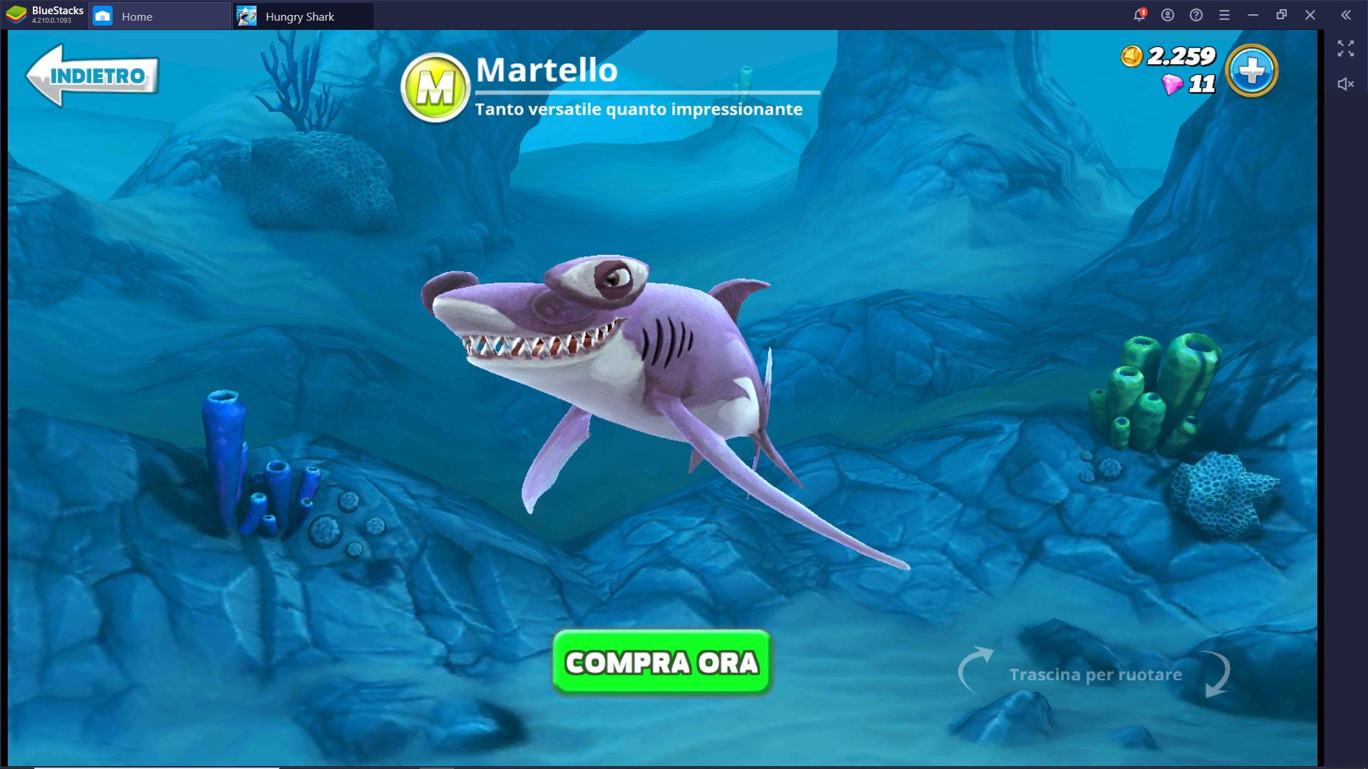 Guida agli Squali di Hungry Shark World – Come scegliere e differenze