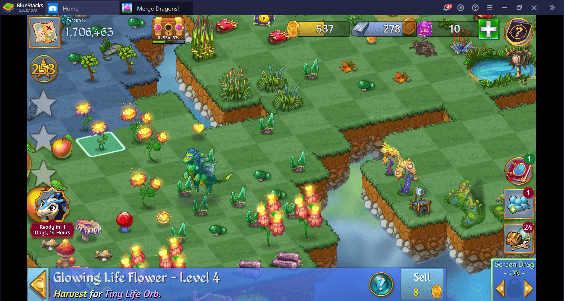 Everything You Should Know About Life Flowers in Merge Dragons