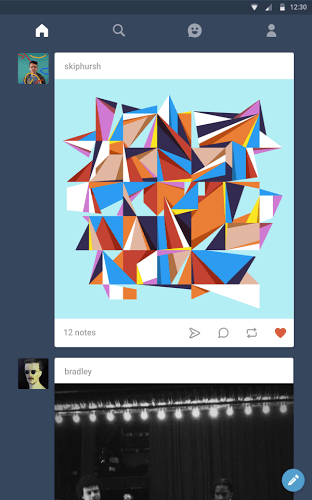 Main Tumblr on PC 8